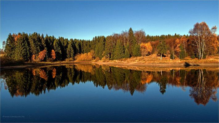die letzten Herbstfarben ... am Langer Teich bei Clausthal-Zellerfeld