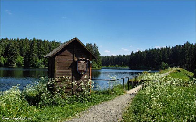am Bärenbrucher Teich ...