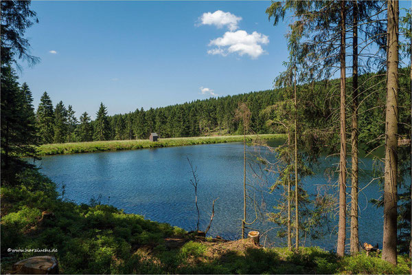 neuer Grumbacher Teich ...