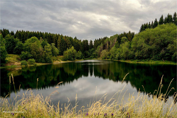 Spiegelungen ... am oberen Eschenbacher Teich  www.harzluchs.de