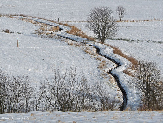 Winter im Harz ... Zellerfelder Kunstgraben