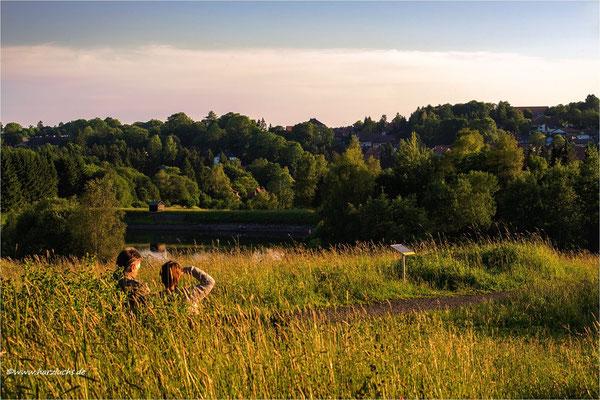 man konnte nochmal Sonne tanken ... Eschenbacher Teiche in Clausthal-Zellerfeld