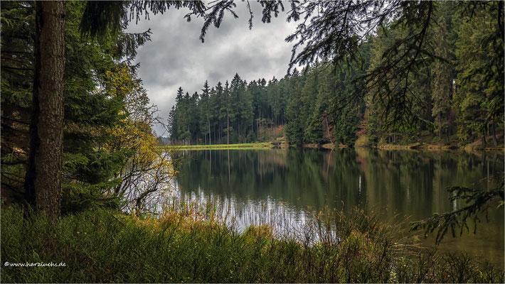 am mittleren Grumbacher Teich ...