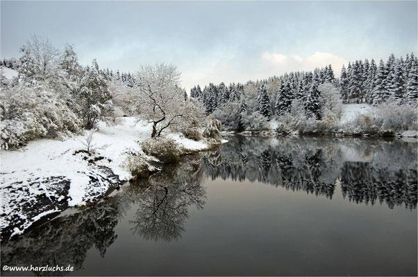 am oberen Eschenbacher Teich