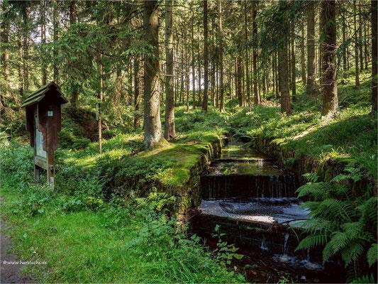 die Wiege des Dammgraben ... bei Altenau