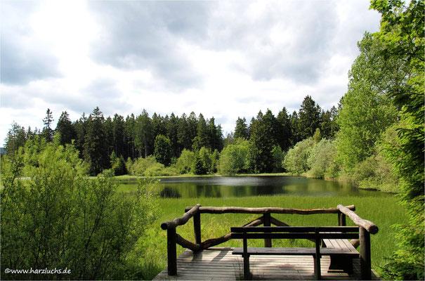 am Marienteich bei Bad Harzburg