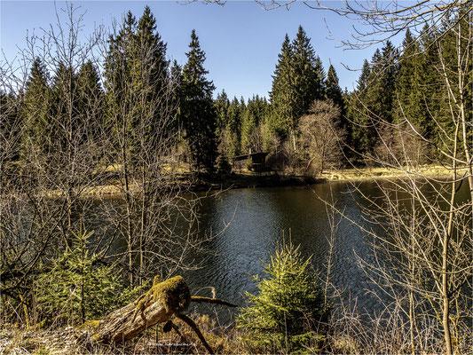 das Haus am See ... am unteren Hahnebalzer Teich