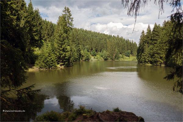 am Grumbacher Teich ...