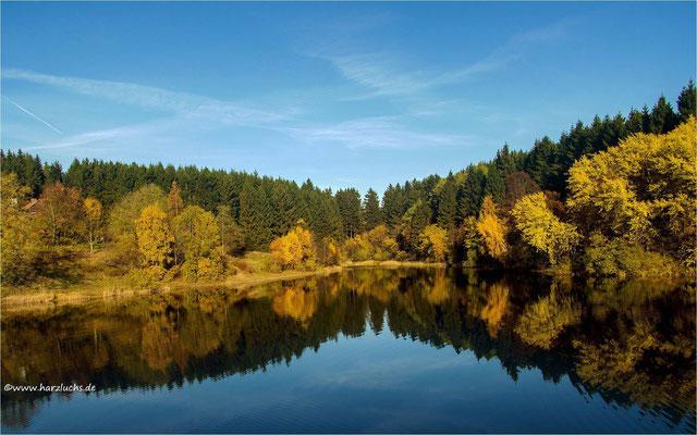 oberer Eschenbacher Teich
