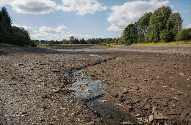 ohne Wasser ... der untere Eschenbacher Teich