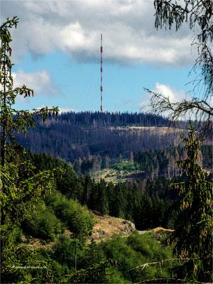 Blick zum Torfhaus Sender