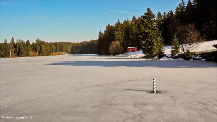 Ziegenberger Teich bei Buntenbock