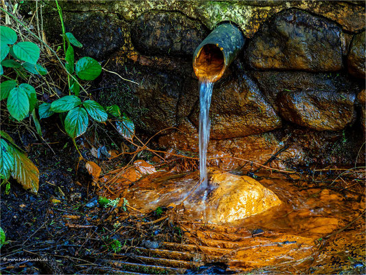 die Eisenquelle ... am Damgraben bei Altenau