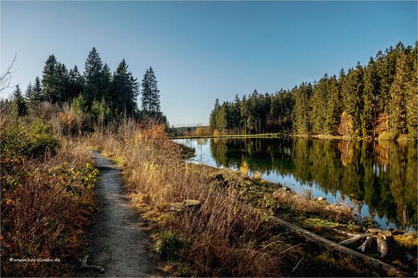 sonnig war's ... am mittleren Grumbacher Teich