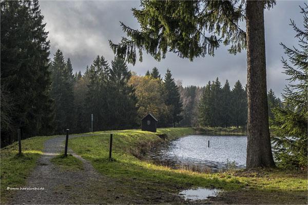 da kam mal kurz die Sonne raus ... am Langer Teich bei Clausthal-Zellerfeld