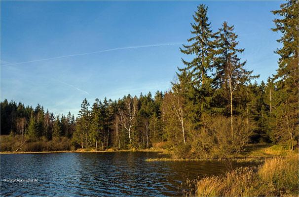 am Oberen Hausherzberger Teich