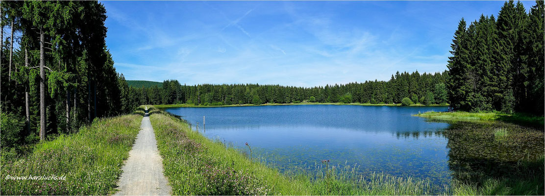 am Kiefhölzer Teich ... bei Clausthal-Zellerfeld