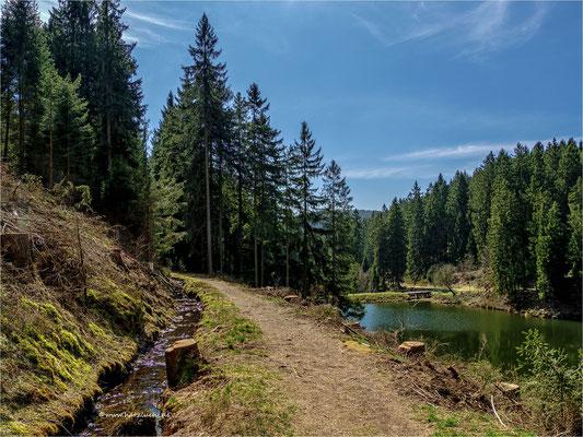 am Grumbacher Graben ... oberhalb vom unteren Grumbacher Teich