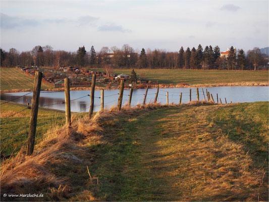 der Weg ... zum Johann-Friedrich-Teich