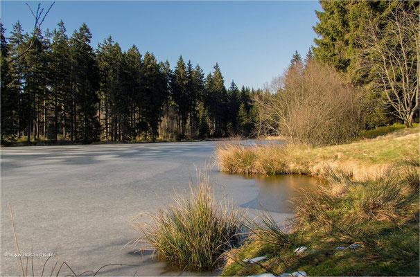 am Hasenbacher Teich