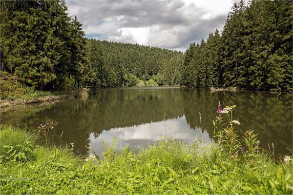 der untere Grumbacher Teich ...