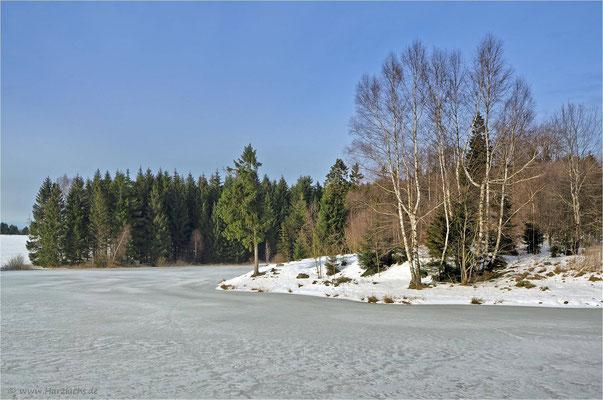 die Teiche haben noch eine Eisdecke ... Langer Teich