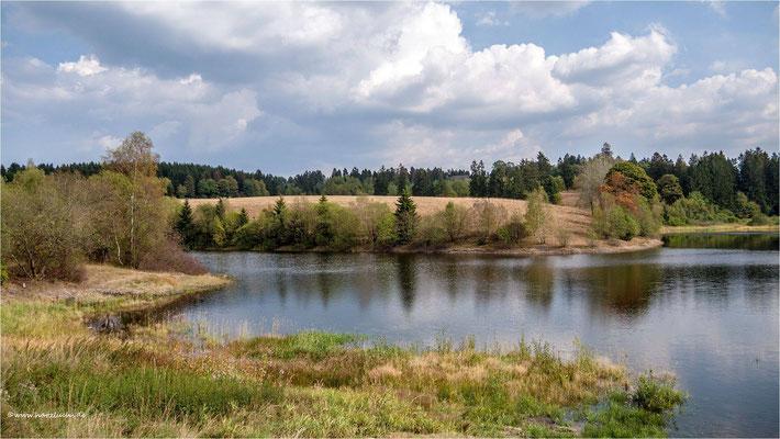 er füllt sich wieder ... der untere Eschenbacher Teich