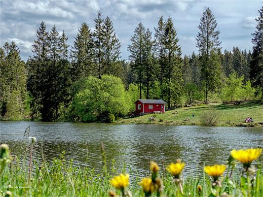 am Ziegenberger Teich ... bei Buntenbock