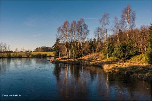 ganz dünnes Eis ... auf dem Langer Teich