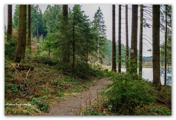 Liebesbankweg ... am mittleren Grumbach