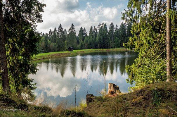 am Semmelwieser Teich ...