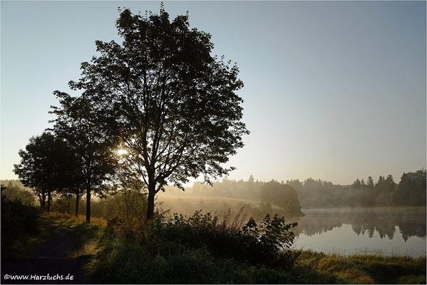 am unteren Eschenbacher Teich
