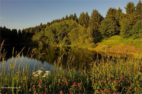 im letzten Sonnenlicht ... der obere Eschenbacher Teich