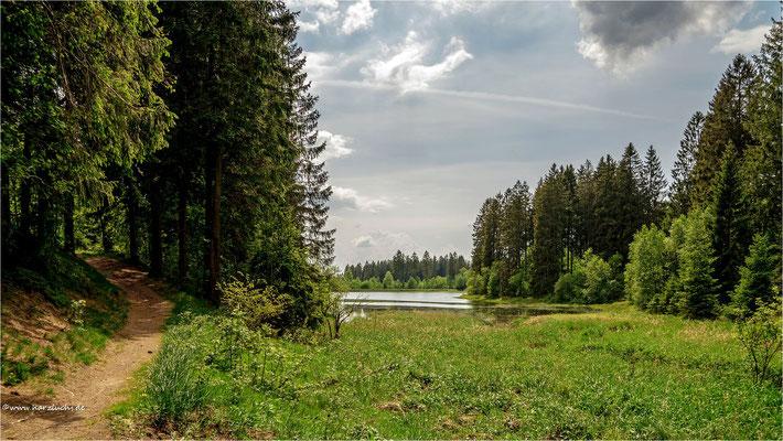 am Schwarzenbacher Teich