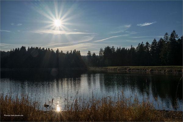 nochmal die Sonne eingefangen ... am Kiefhölzer Teich bei Clausthal-Zellerfeld