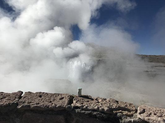 Au bord du Geyser El Tatio, au Chili, à 4300m d'altitude