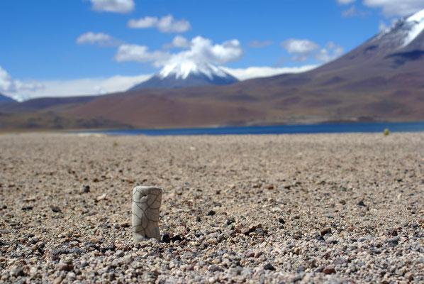 Au lac de Miscanti et Miniques, au Chili...