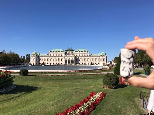 Devant le grand chateau de Vienne ...