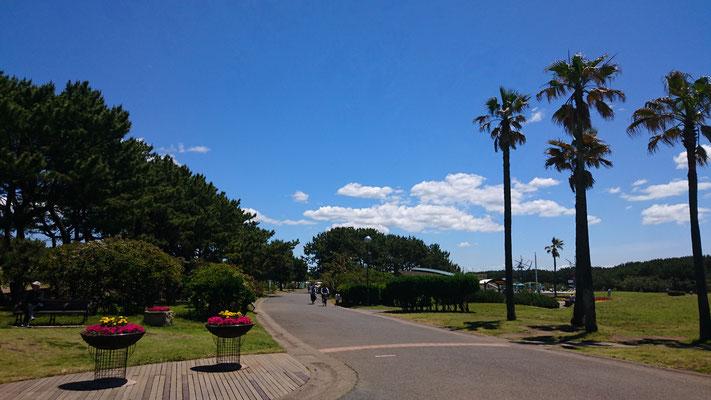 辻堂海浜公園にて