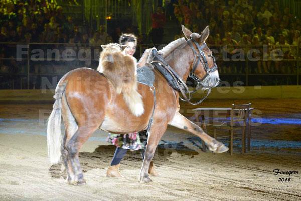 """Spectacle Nocturne des """"Nuits Equestres"""" lors de la Féria de BEZIERS 2018 - 2"""