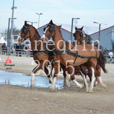Cheval Passion 2015 - Démonstration attelage en Team ( 4 chevaux )