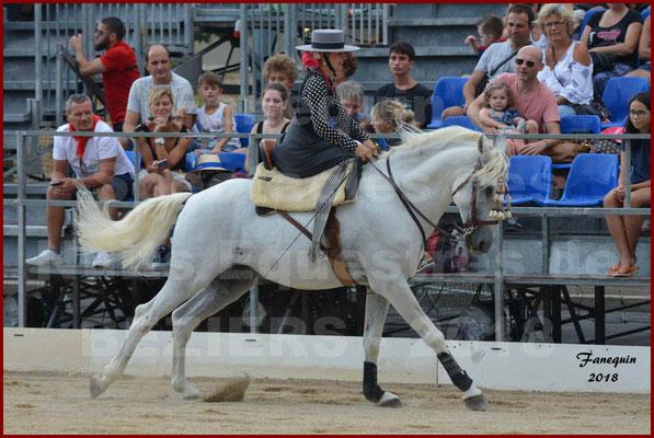 """Spectacle en Journée des """"Nuits Equestres"""" lors de la Féria de BEZIERS 2018 - 1"""