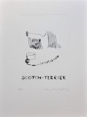 Scotch Terrier, 25€