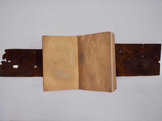 GOLDEN AGE, 20x26 cm, rusty sheet of iron, book, spray, VIENNA 2019, photo: Reinhold Ponesch ©