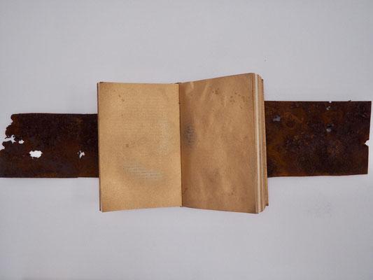 GOLDEN AGE, 20x26 cm, rusty sheet of iron, book, spray, VIENNA 2019, photo: Reinhold Ponesch ©