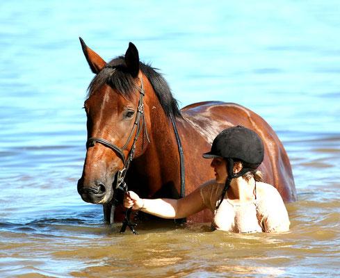 stage cheval, baignade au lac du Bourdon
