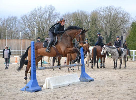 stage cheval pendant les vacances d'hiver, séance de CSO