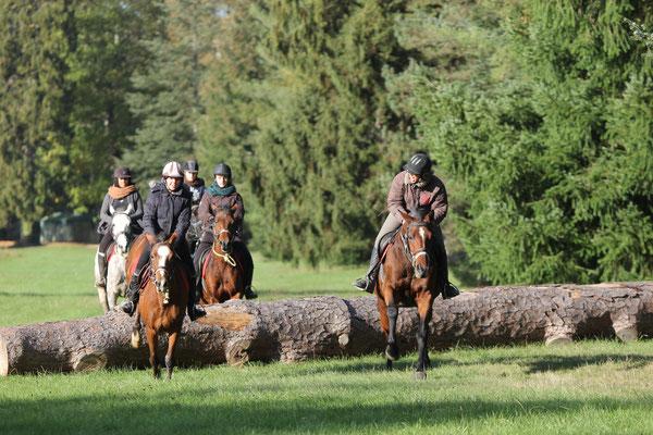 stage d'équitation en hiver aux Grilles