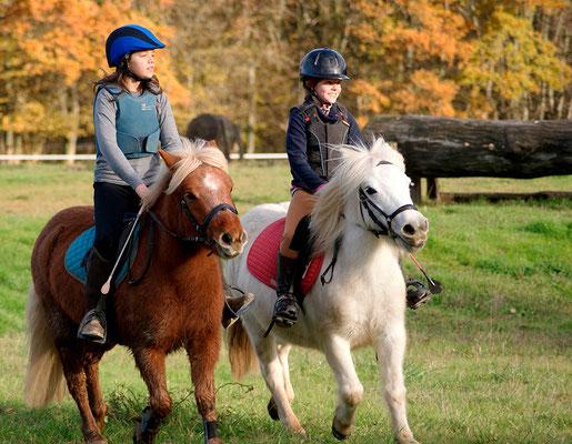 stage poney, l'automne aux Grilles