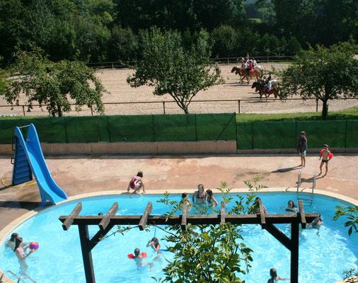 Stage d'équitation pour adultes et familles, domaine avec piscine
